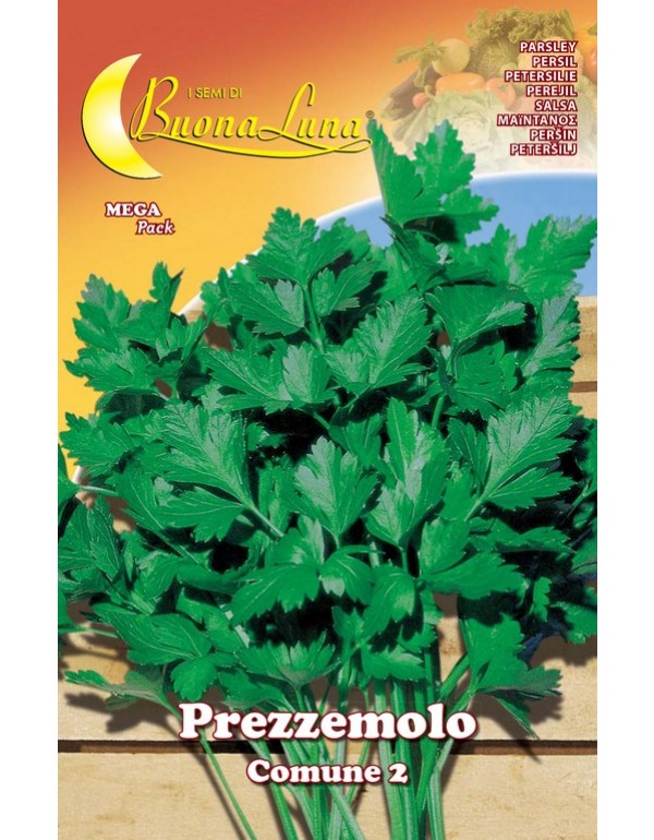 Semi orto Prezzemolo comune conf 10 pezzi agricoltura giardinaggio