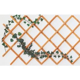 Traliccio estendibile max cm 100x200 in bamboo ø mm 14/16 conf 10 pz