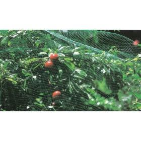 Rete per coltura protezione antiuccelli rotolo m 2x10 colore verde