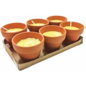 Citronella Mod. Pollicino diametro mm. 70 altezza mm. 60 confezione da 6 pezzi - casa giardino
