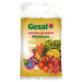 Concime granulato per piante GESAL sacco da 5 kg Mod MULTIUSO