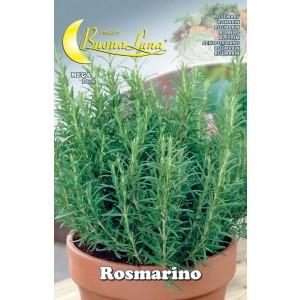 Semi orto Rosmarino confezione 10 pezzi agricoltura giardinaggio